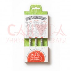 Набор «Растущий карандаш «Восточные пряности» графитный, 3 шт
